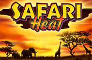 Safari Heat в Вулкане 777
